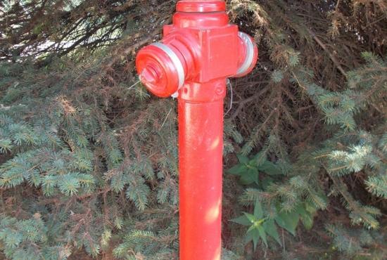 c_550_370_16777215_00_images_wydarzenia_2019_hydranty_03.jpg